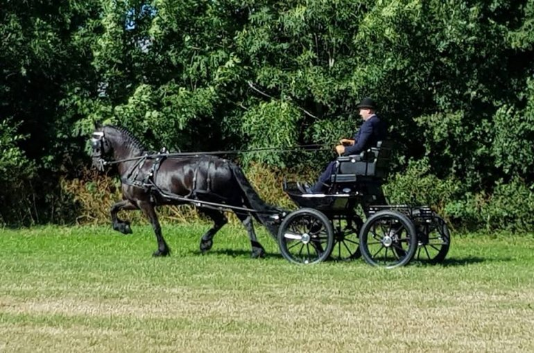 Finale Horses2fly KFPS mencompetitie